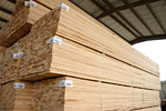 Power Pine MSR Lumber